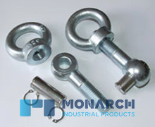 Swing Eye Bolts with Pins and Clips